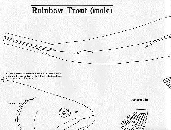 Fish patterns for wood carving plans diy free download